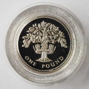 Royal Mint Silver Proof One Pound